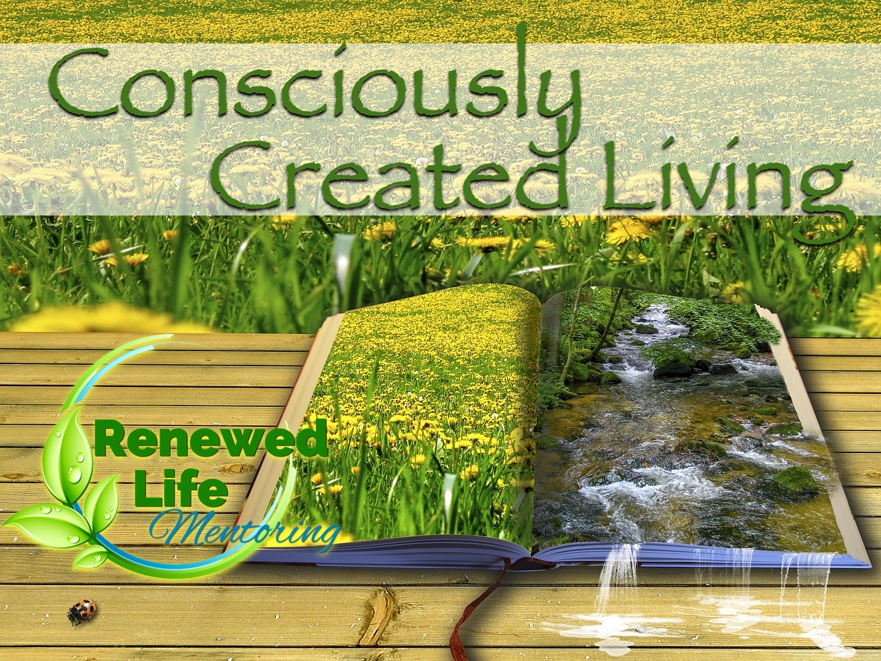 Consciously Created Living - Being intentional to fashion a life that brings honor and glory to God.Remembering who I am in Christ and the riches of God's love lavished on me.