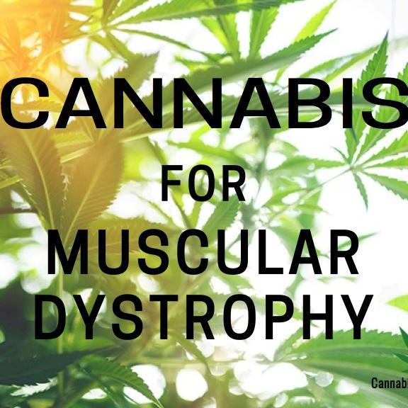 muscular-dystrophy-1.jpg