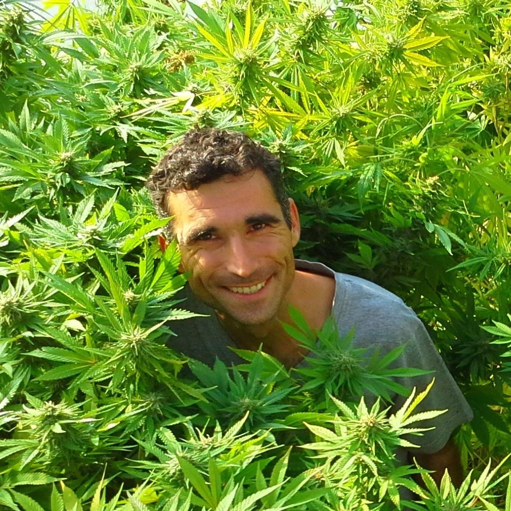 Huanito-in-cannabis-2014-Bregi-Croatia.jpg