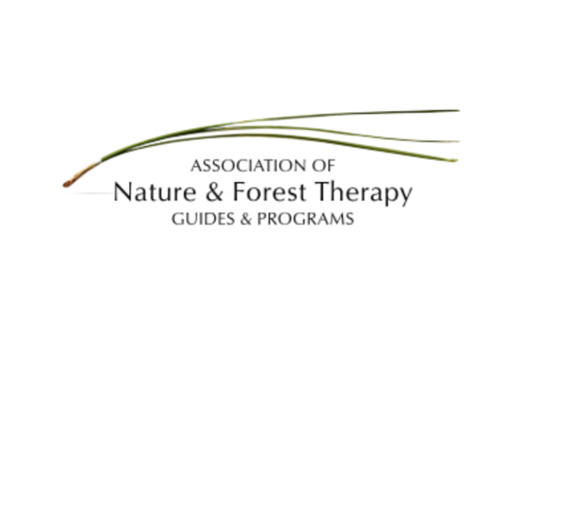 Association of Nature and Forest Therapy & Programs    Worldwide resources, training and events.