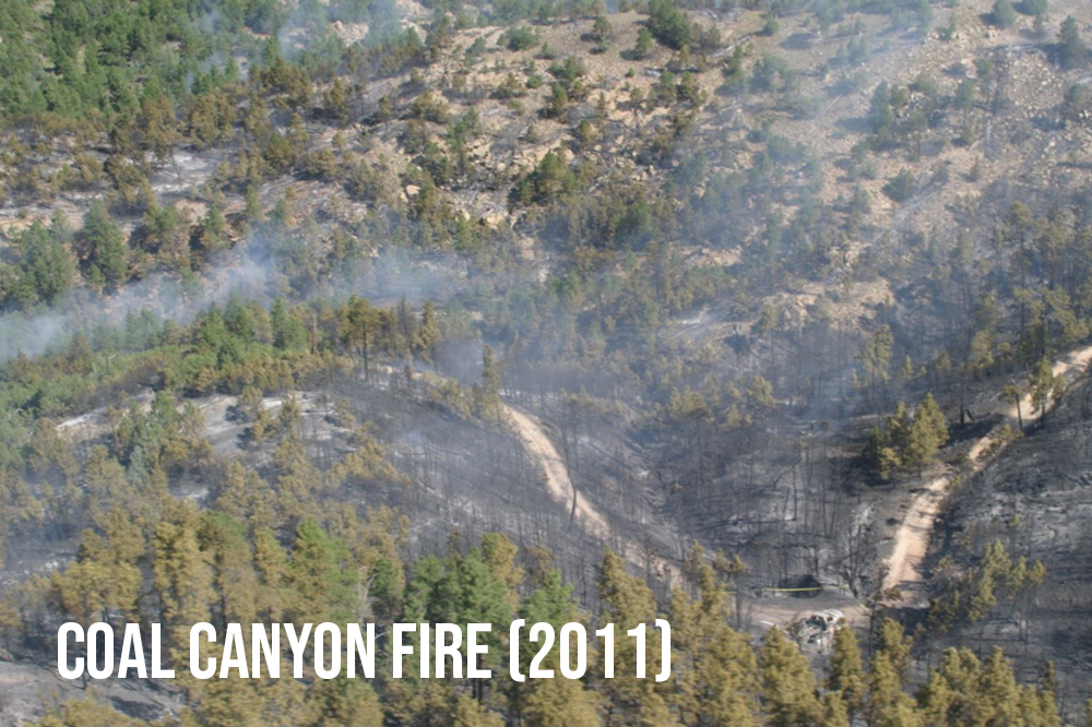 SAI Reports:  Part 1  /  Part 2  /  Part 3  Loss of a South Dakota firefighter in the Black Hills National Forest. The Discussion and Analysis looks at Risk and Resilience, Cause and Complexity, and Leadership.  Google Earth Flyover