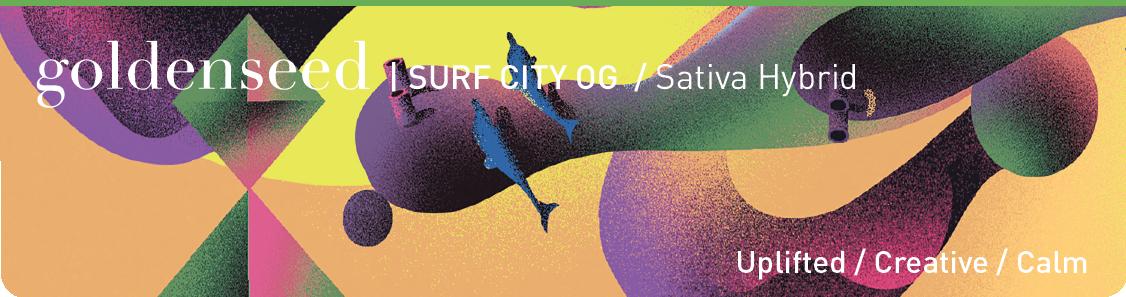 Surf City-01.png