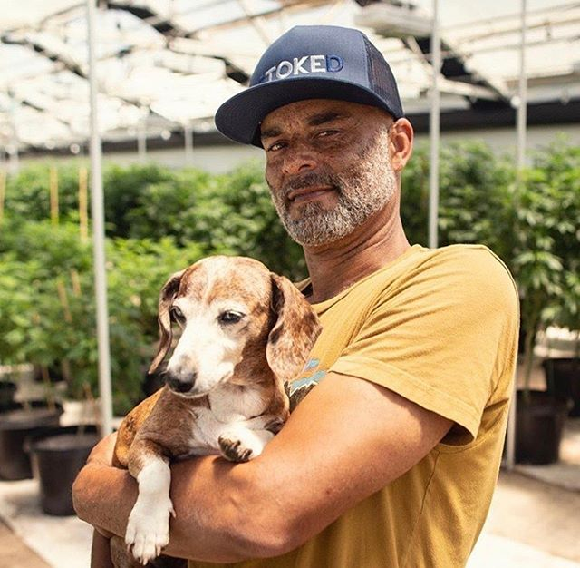 """I know that it's part of me. It always has been. I've been doing cannabis farming all of my life, and it's an art. It's a lifestyle. We believe in its goodness and what we put in our bodies is important."" - JR, Master Goldenseed Farmer"