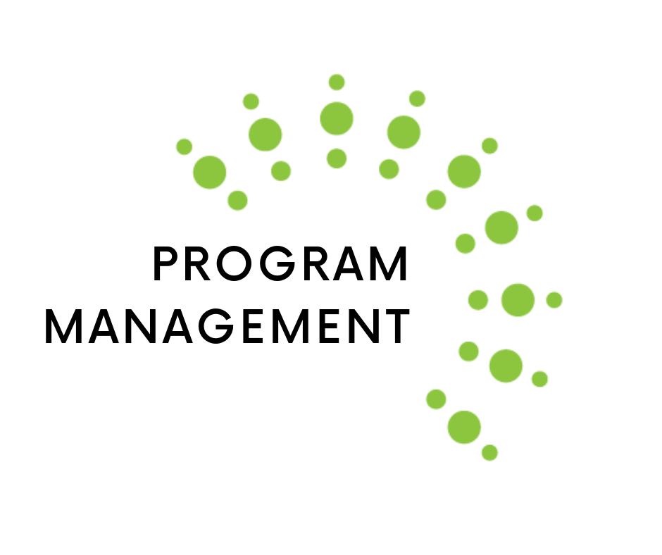 program management (2).png