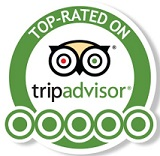 TESTIMONIALS (more than) 135 Five Star Reviews!