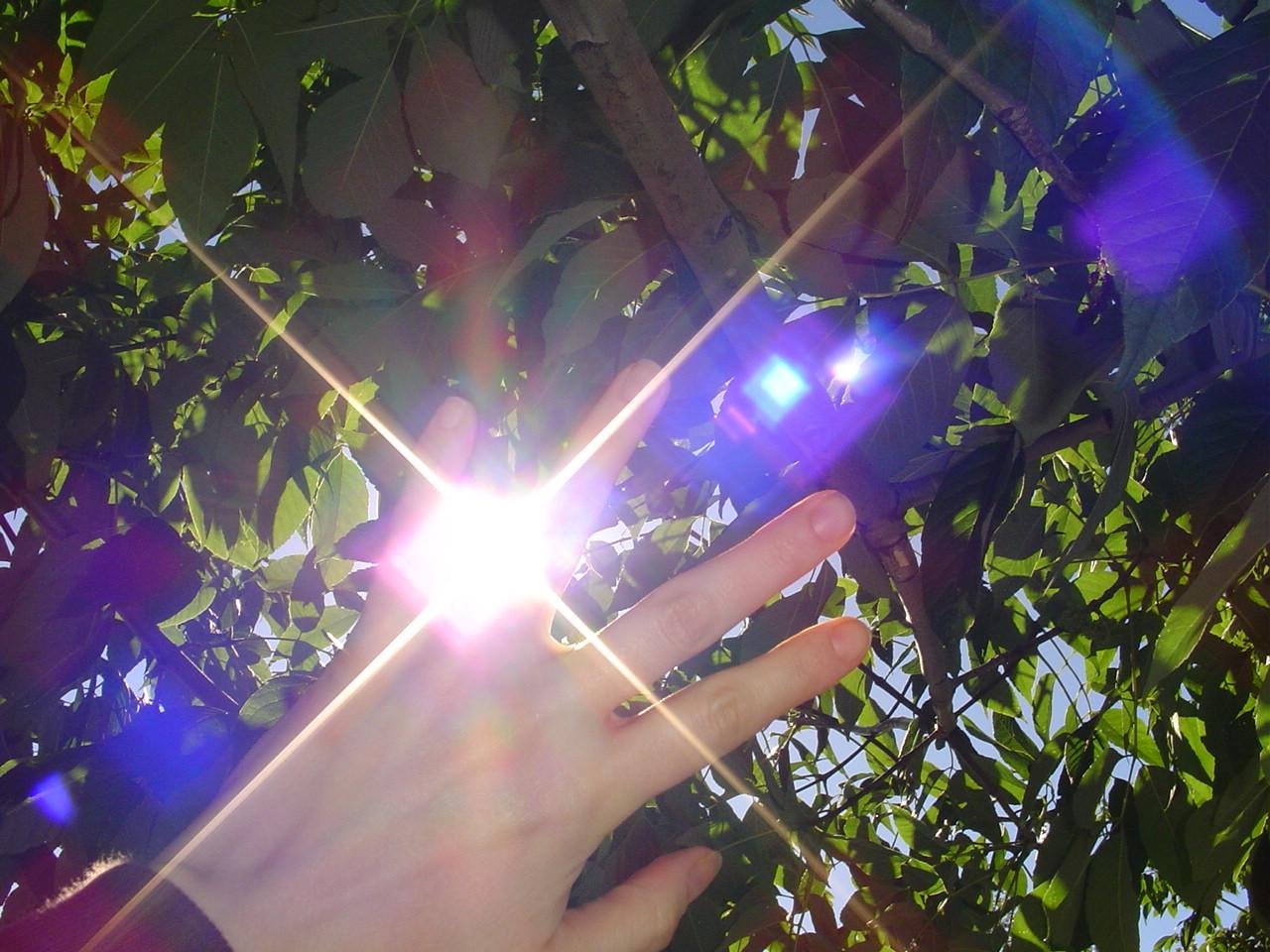 light_fingers.JPG