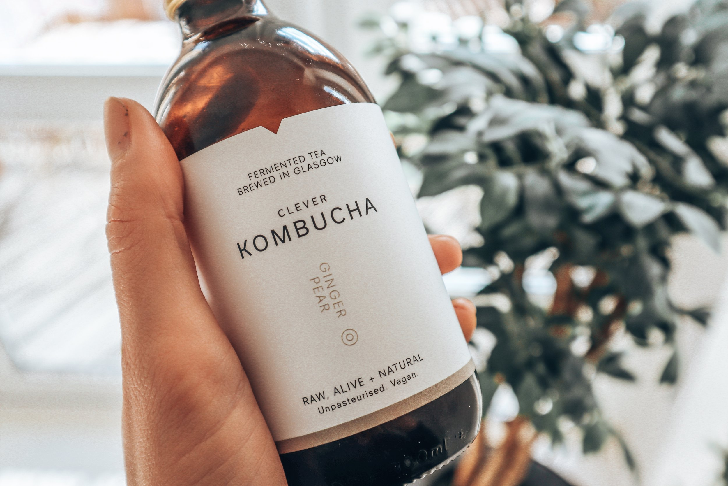 KOMBUCHA -