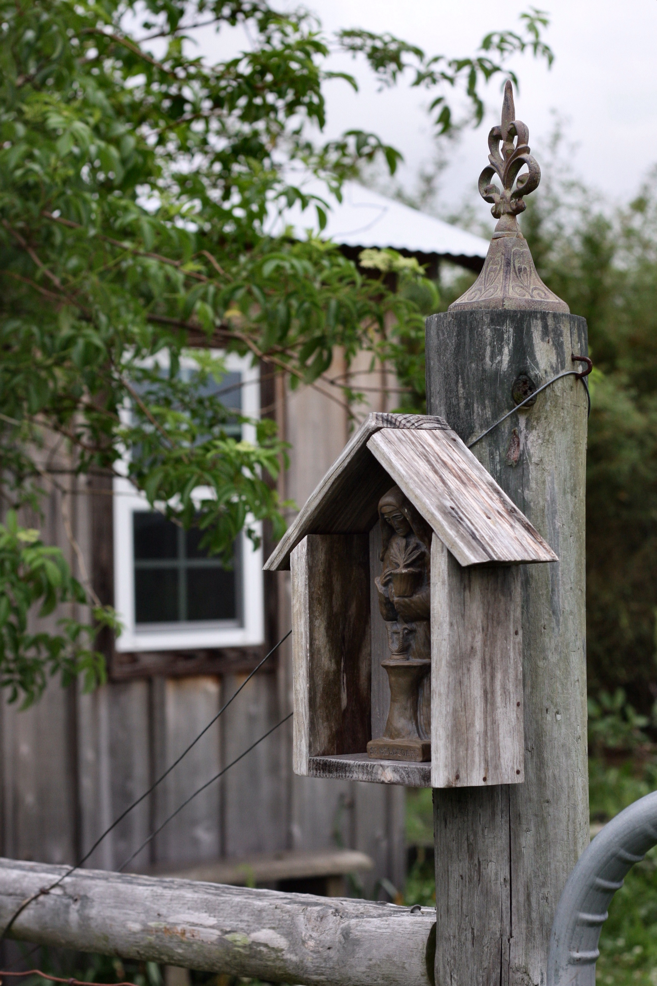 Saint Hildegard & Garden Shed
