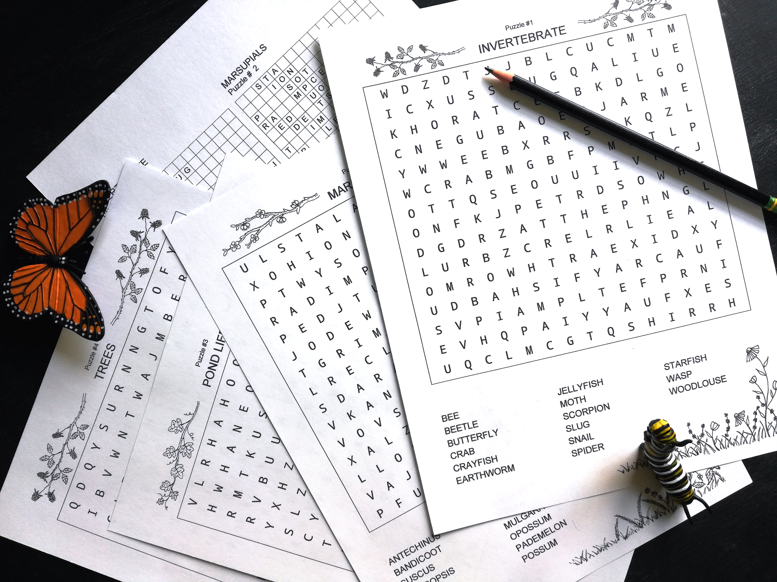 - Word Search Sample Pages