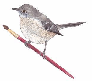 Mocking bird-smaller.png