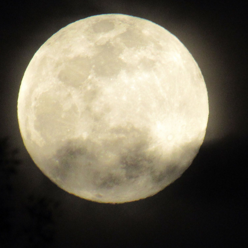 Hello Mama Moon… we send our love and Gratitude!