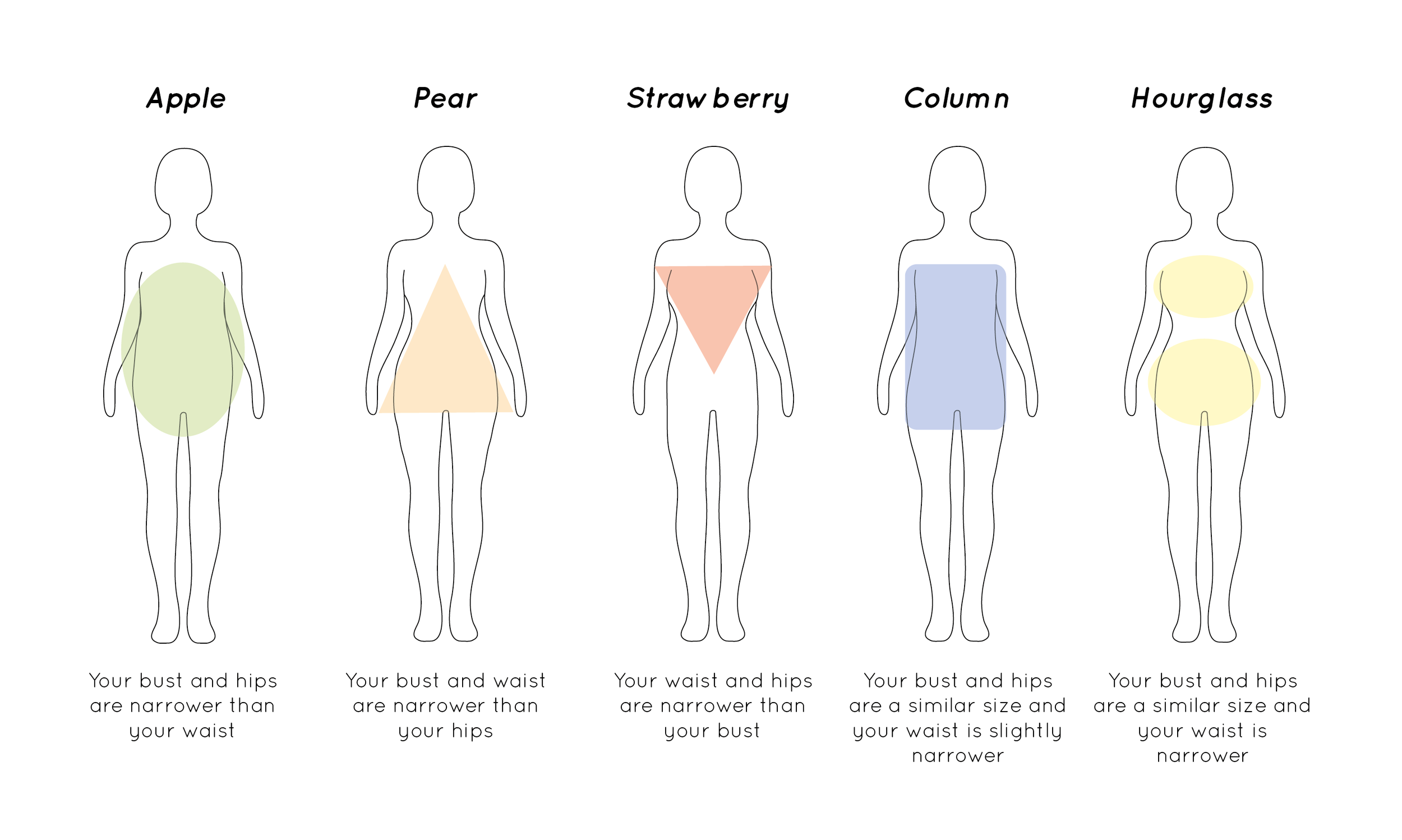 what_are_the_different_body_shapes.png