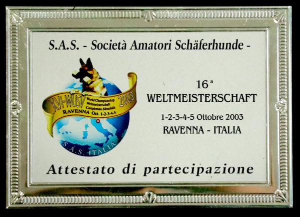 SAS1-600x433.jpg