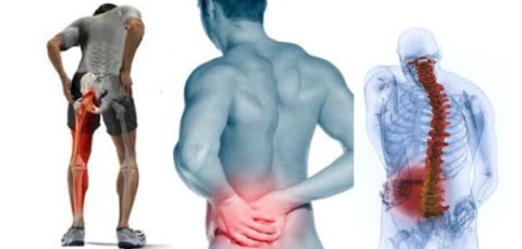 Back pain can travel into the groin, thighs, legs, and feet, as well as spread across the entire back.