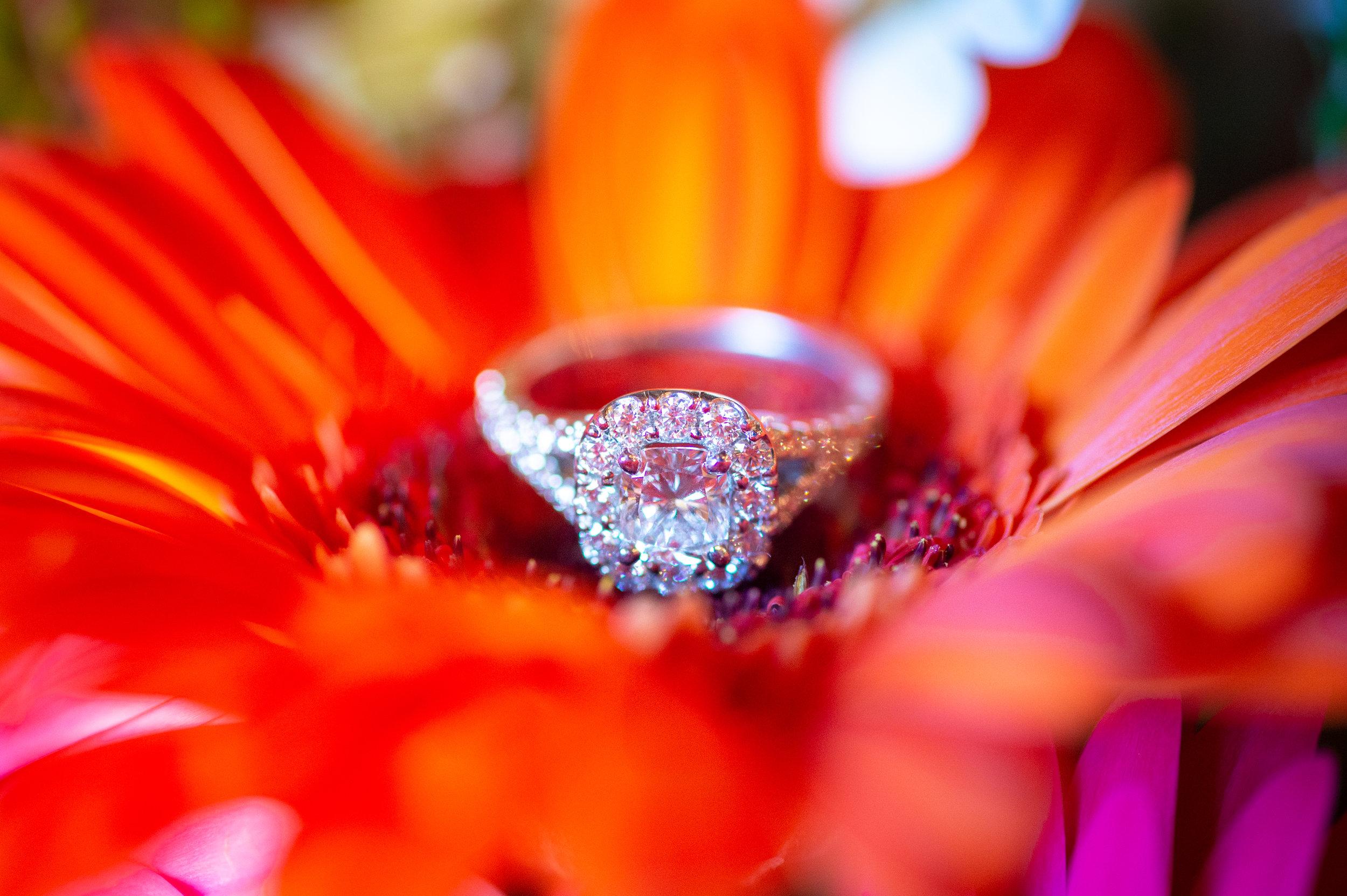 Matt & Grace Proposal 9.jpg