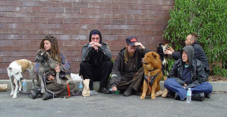 homeless_group-768x396.jpg