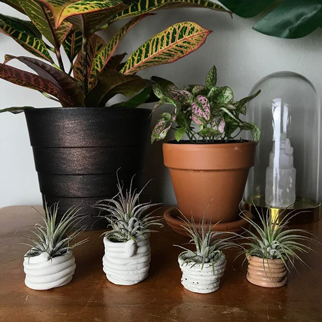 Introducing our newest additions to the shop: Itty Bitty Coil Planters 🌱 All handmade and comes with airplant! Available at MADEFABULOUS.COM✨ #madefabulous