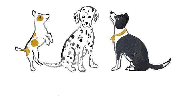 Crazy Kind Calm logo