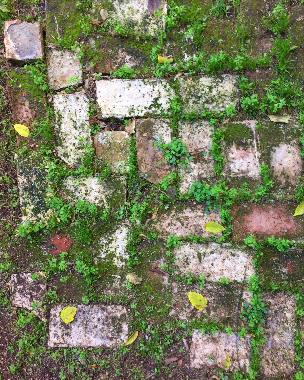 JIwar box installation thumbnail (garden stones).jpg