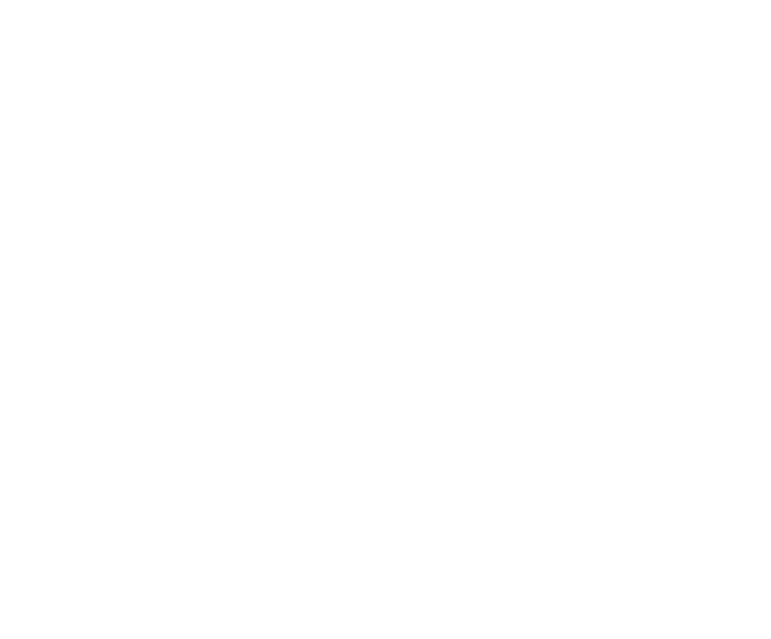 10. AAHSFF 2019 Logo White.png