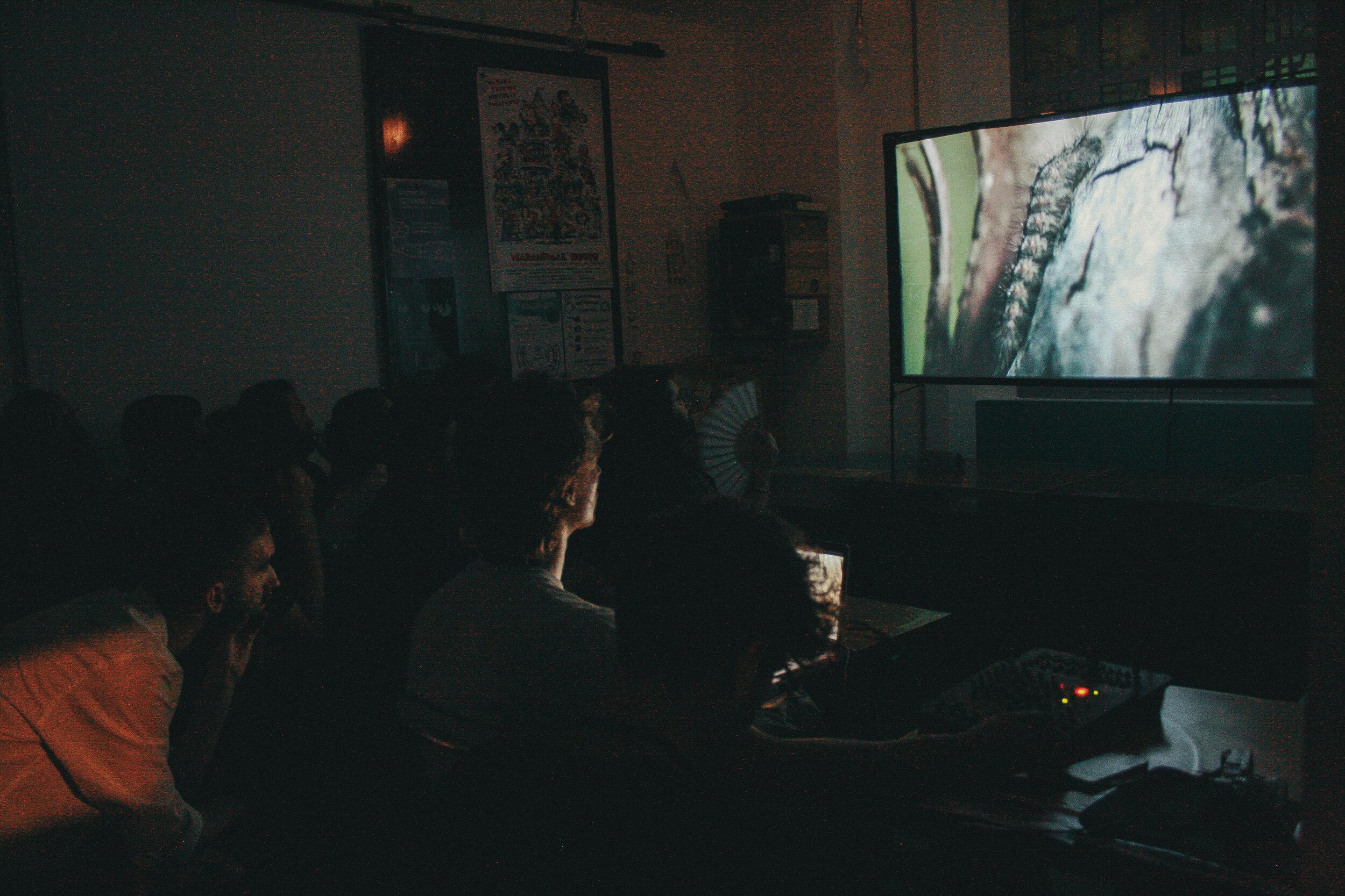 "- Screenings ""Artifishal"" by Patagonia at C.I.Q.""Appuntamento ai marinai"" by Ariam Tekle at Nuovo ArmeniaShort films of Duemila30 Contest at Madama Hostel&Bistrot"