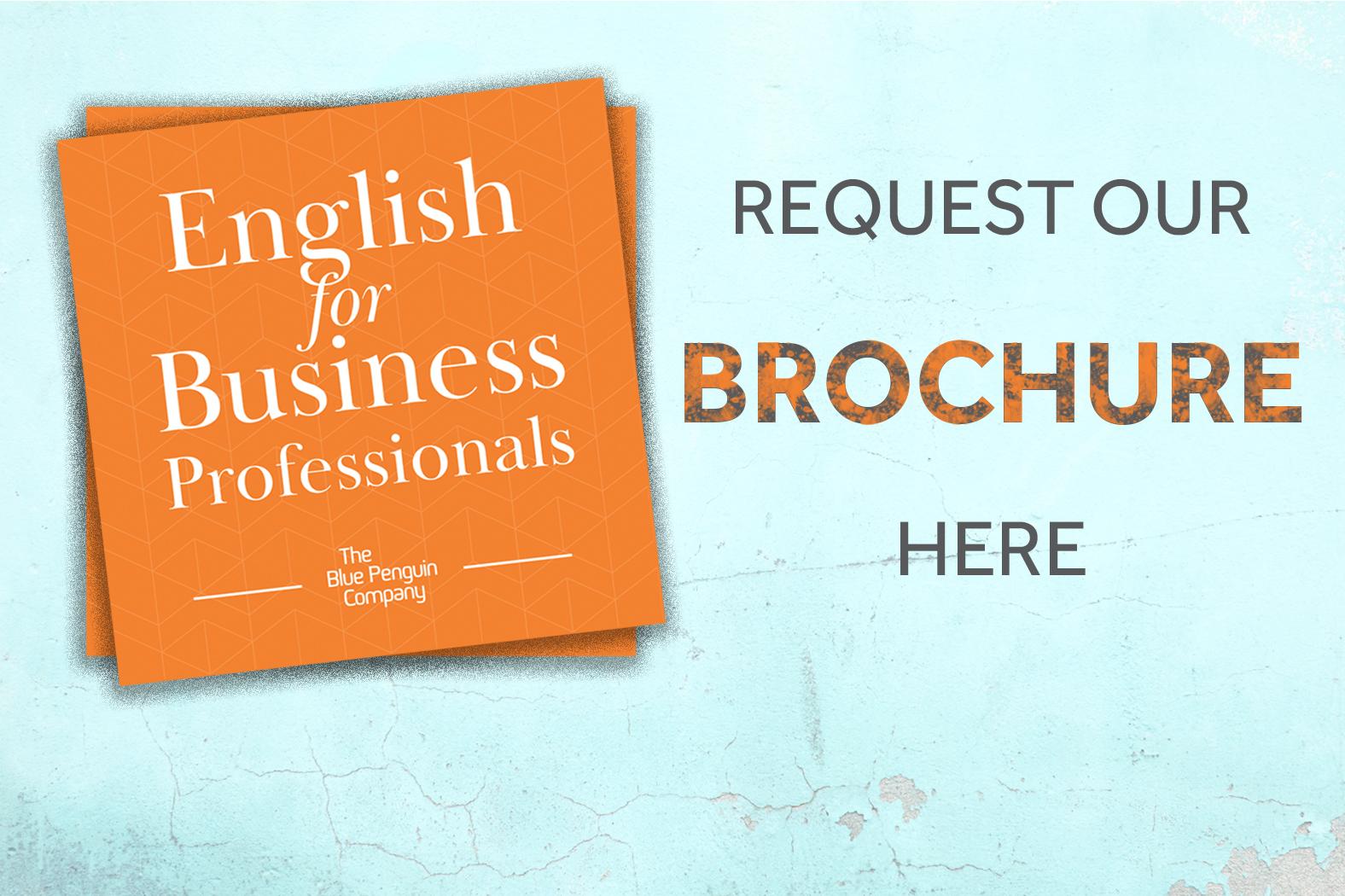 BluePenguin-Request-Brochure-orange.jpg