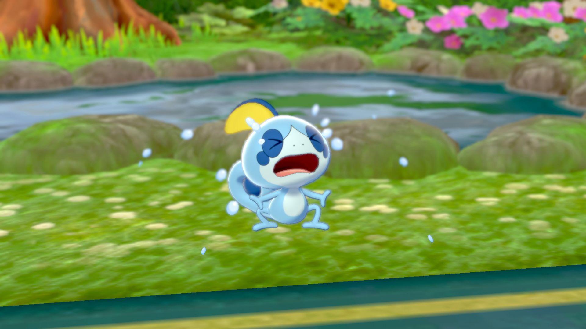 Switch_PokemonSwordPokemonShield_screen_18.jpg