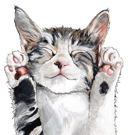 Irene Akio Cat.jpg