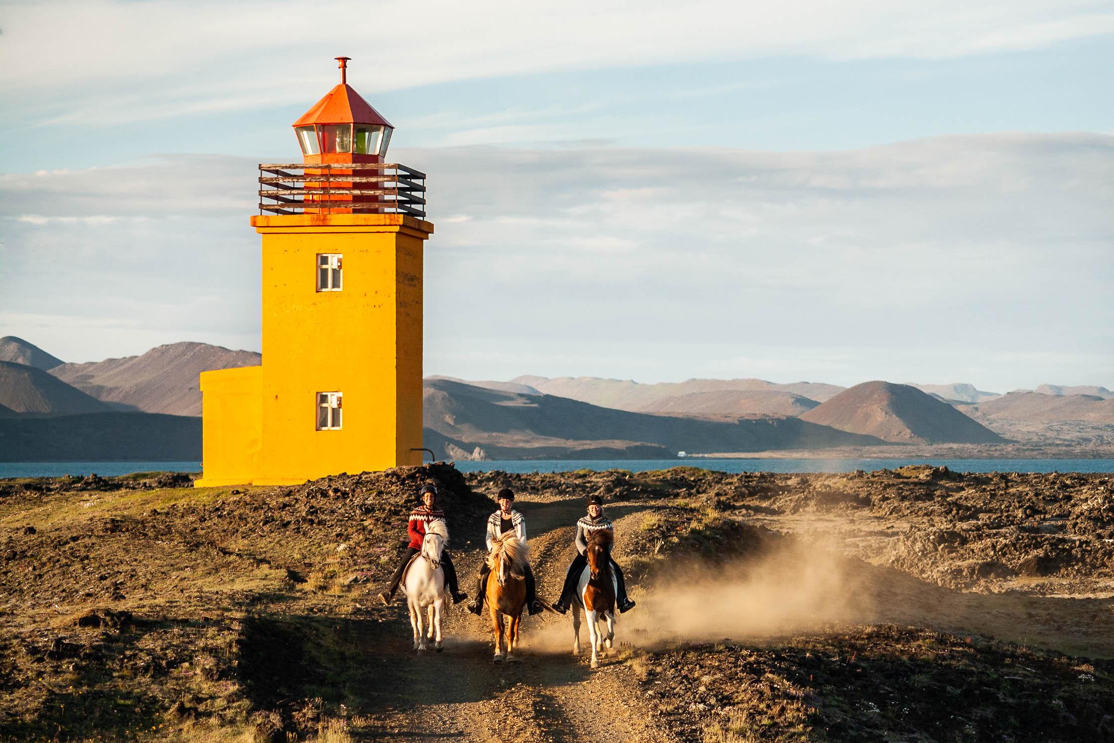Horses galloping at Hopsnesviti lighthouse, Grindavik, Iceland.
