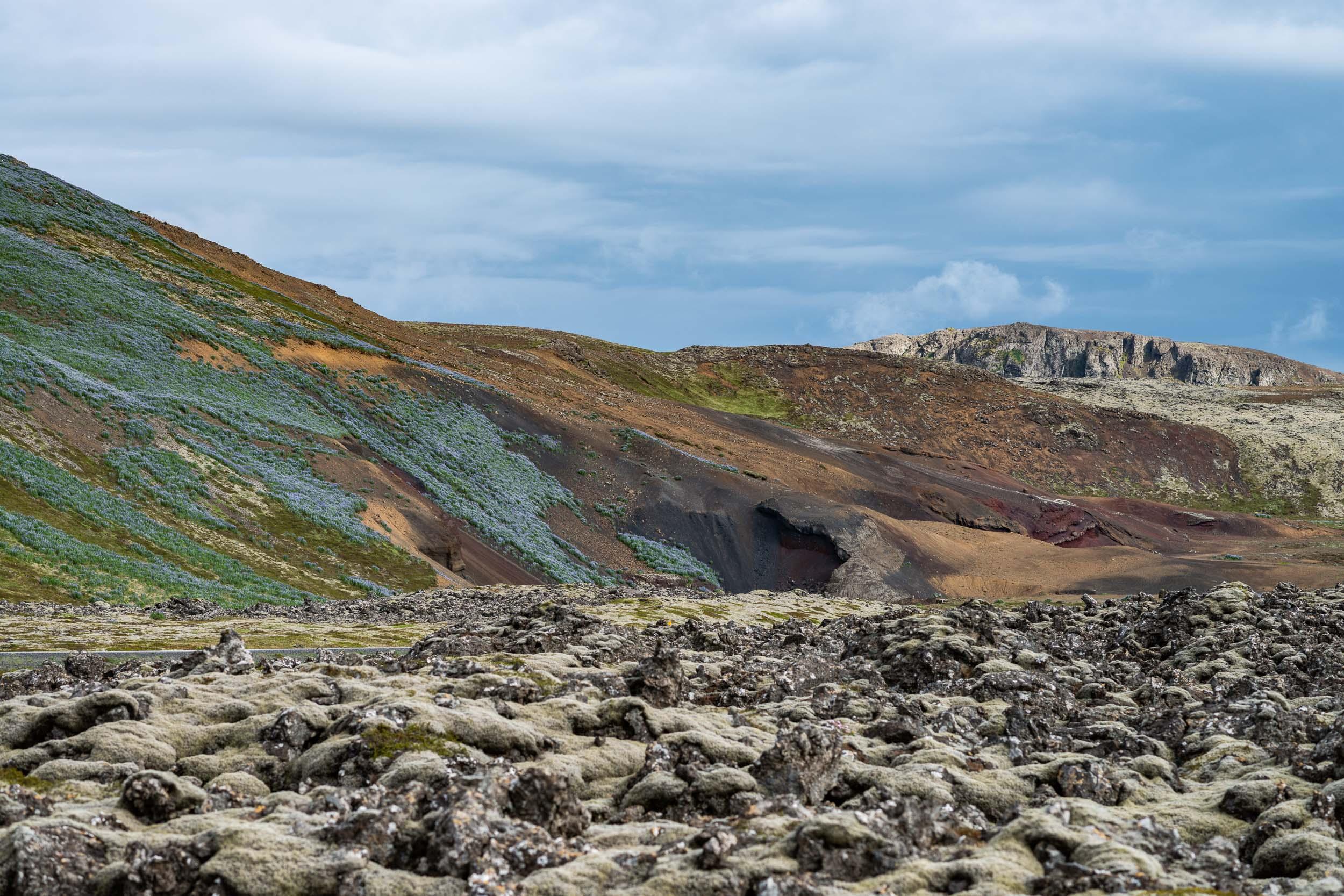 Landscape next to NLI