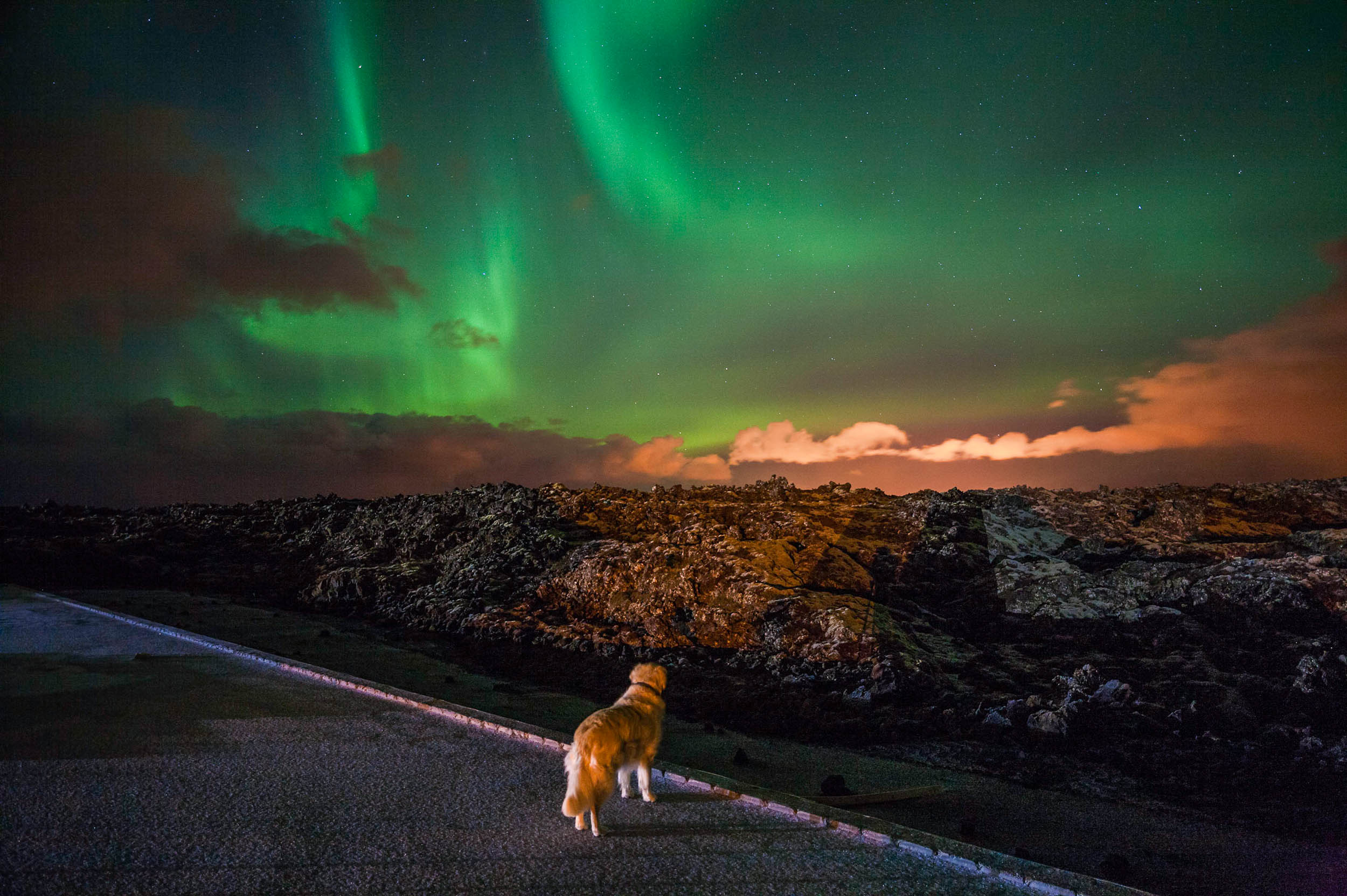 Max watching the Aurora Borealis from Northern Light Inn, Grinda