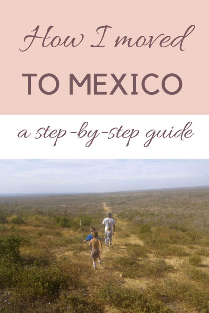 How to pick a husband | why I stayed in Todos Santos | how I became an expat in Mexico | farming | skills | farmer | diy ||