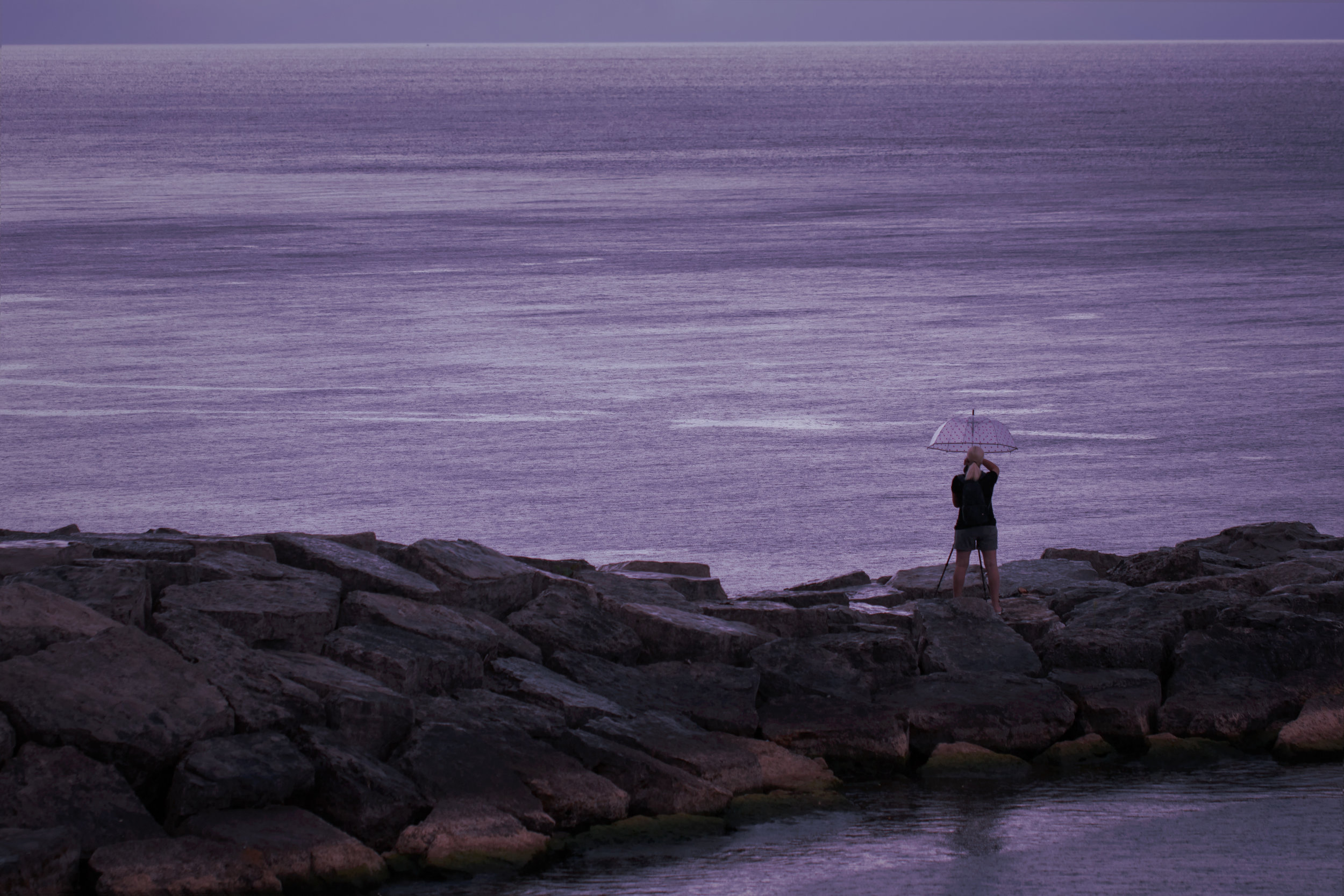 Purple Cast Sky - Photographing in the rain in magical purple light