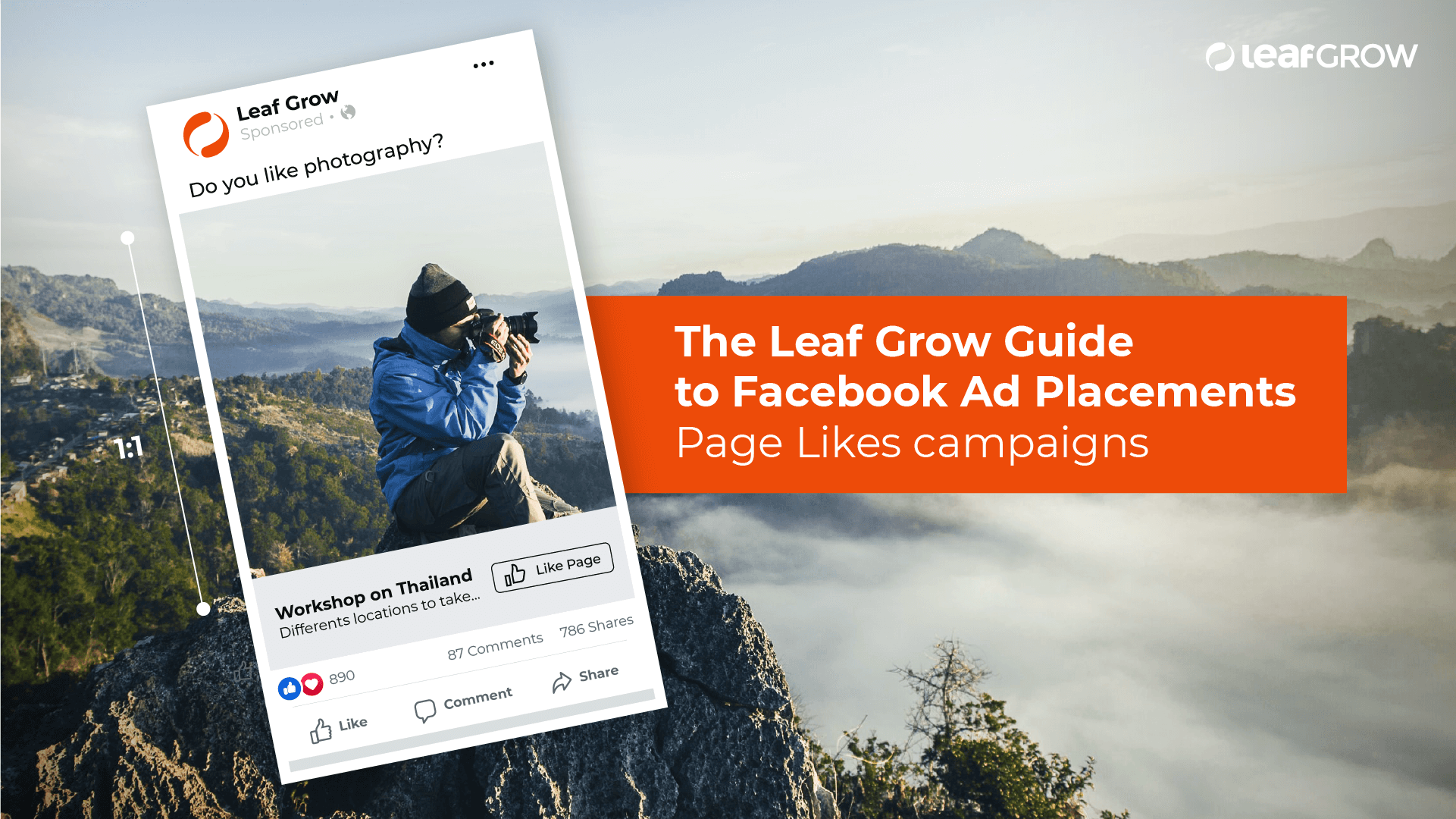 The Leaf Grow Guide to Facebook Ad Placements - Page Likes campaigns.png
