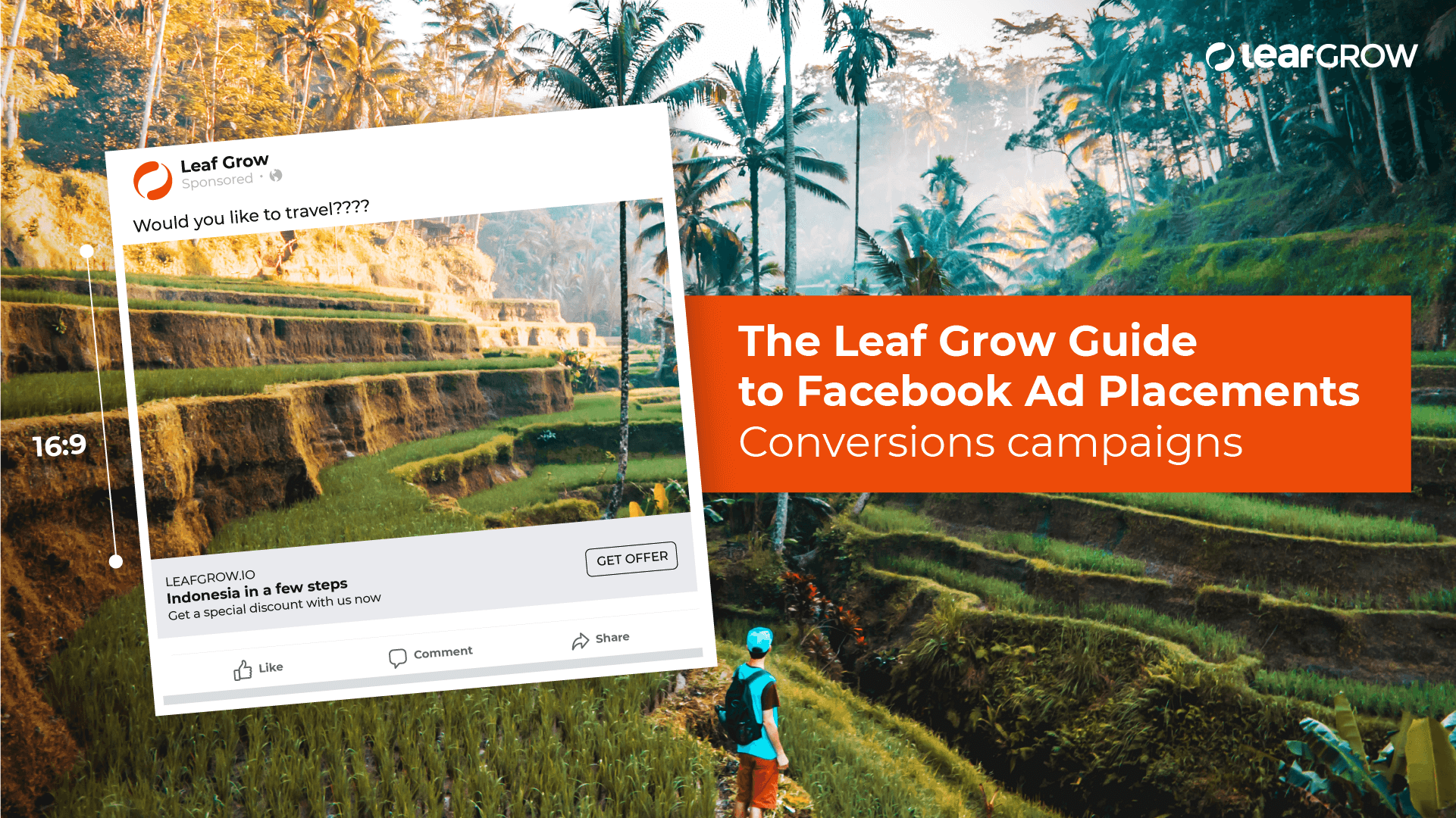 The Leaf Grow Guide to Facebook Ad Placements - Conversions campaigns.png