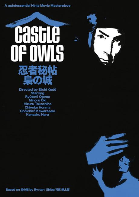Castle_Owls_2.jpg