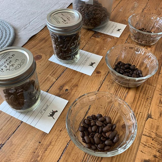 "First #cuppingcoffee session ❤️ our first batch is a general success!  First thoughts ""I don't hate it!"" Lol lots to learn in the caramelization phase and understanding my machine, but yea I don't hate it, I could definitely drink it in the morning and enjoy it.  Full details will be on blog the website soon! 📝"