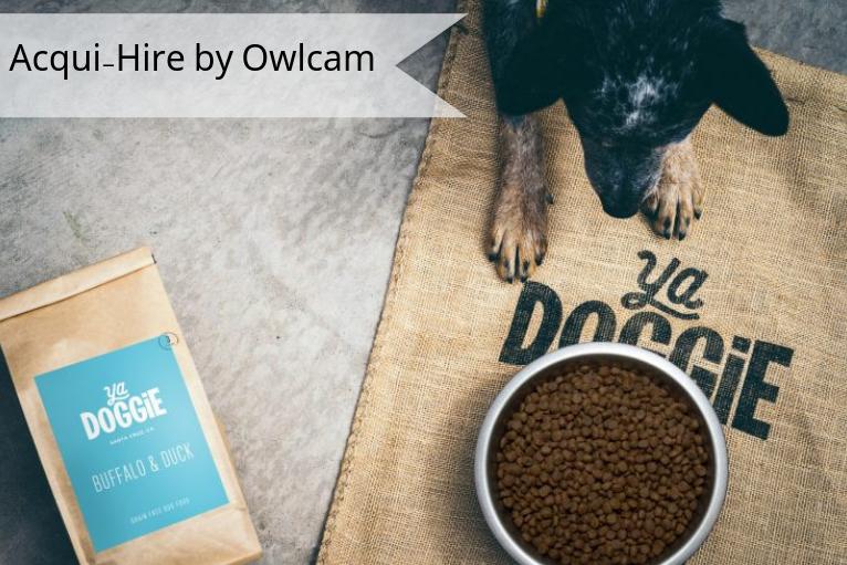 YaDoggie - Dog food delivery serviceAcqui-Hire by OwlcamYaDoggie.com
