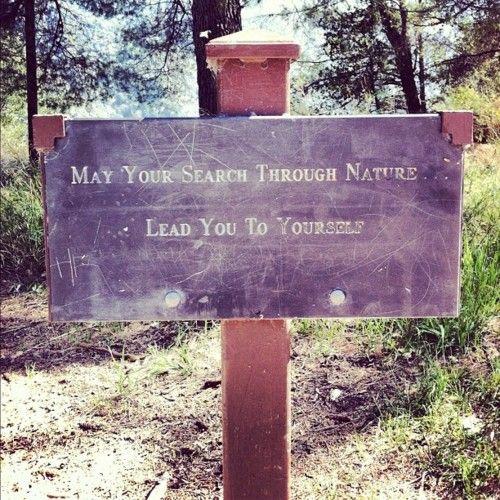 Image courtesy of Mysticmamma.com