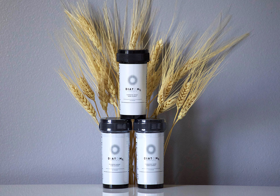 Fermented Wheat Germ Extract Product Image 2
