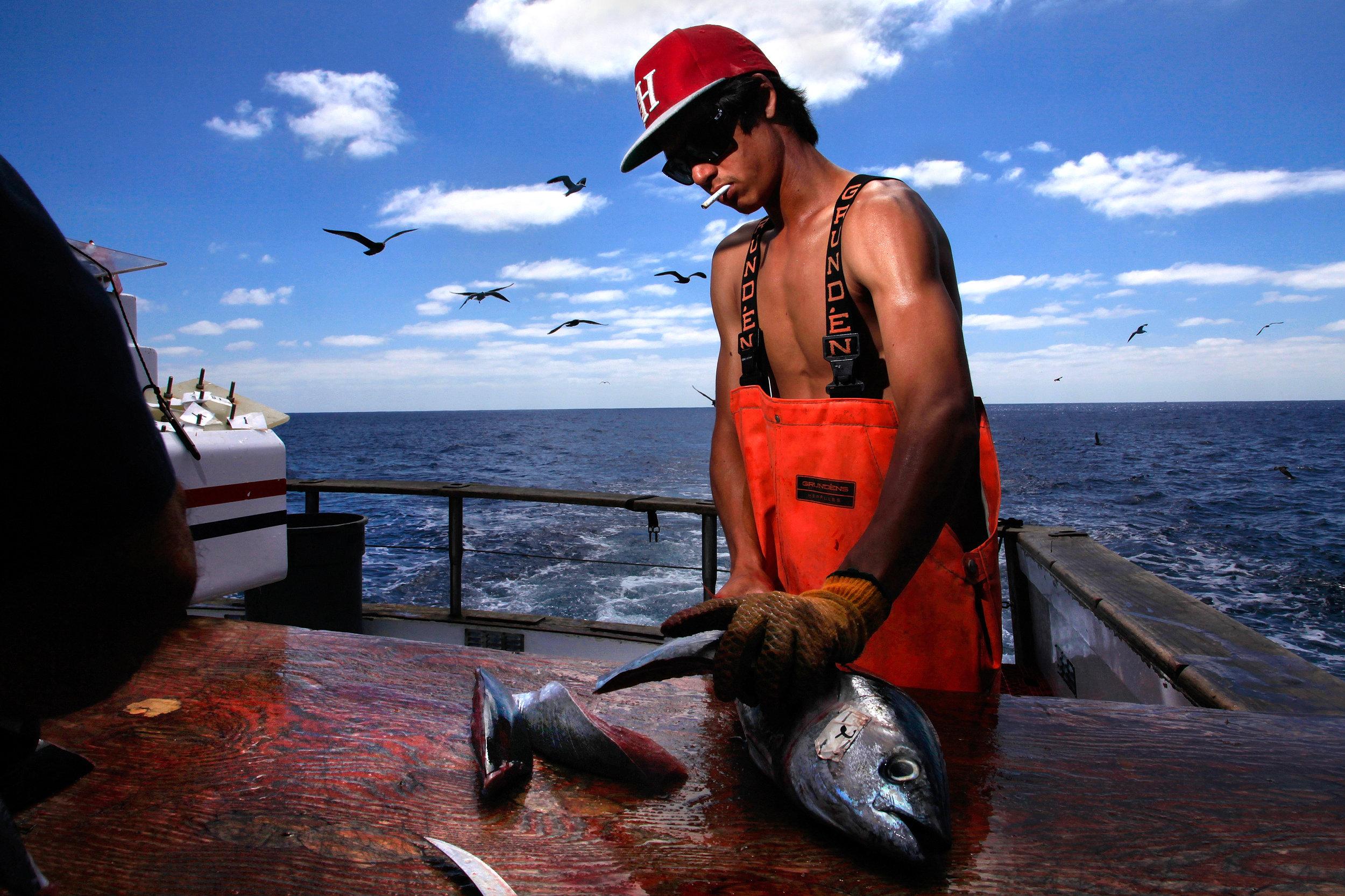 MVsportfishing347235x001.JPG