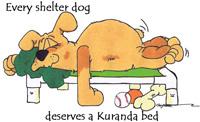 Donate a Kuranda bed