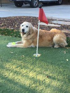 Mabel-golf-225x300.jpg