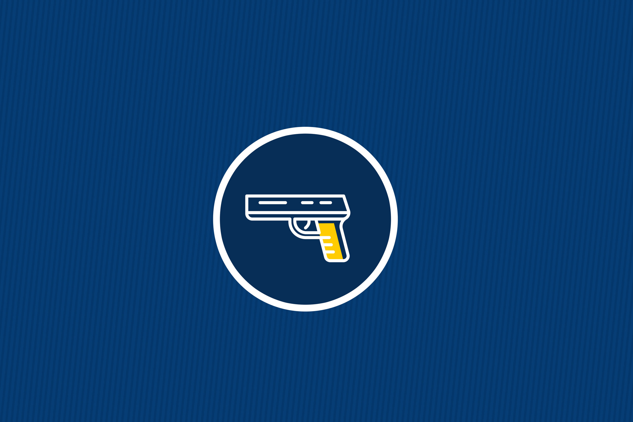 GUN VIOLENCE ISSUE - Decrease the need for prosecutions and incarceration by decreasing incidences of violence in the community.