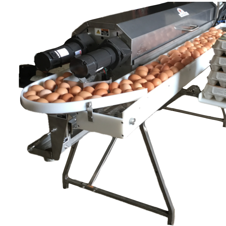 Optional turntable brings the eggs around to the front of the machine for convenient packing.