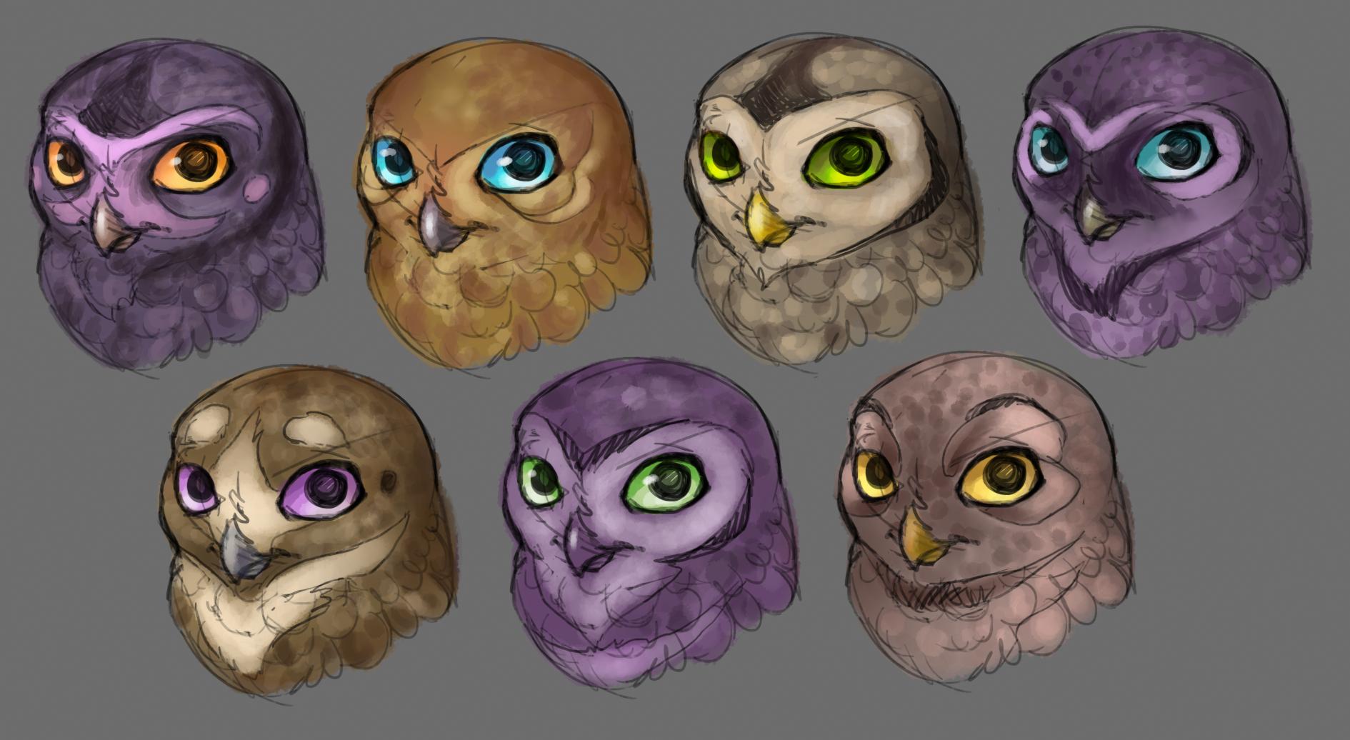 OwlFaces.png