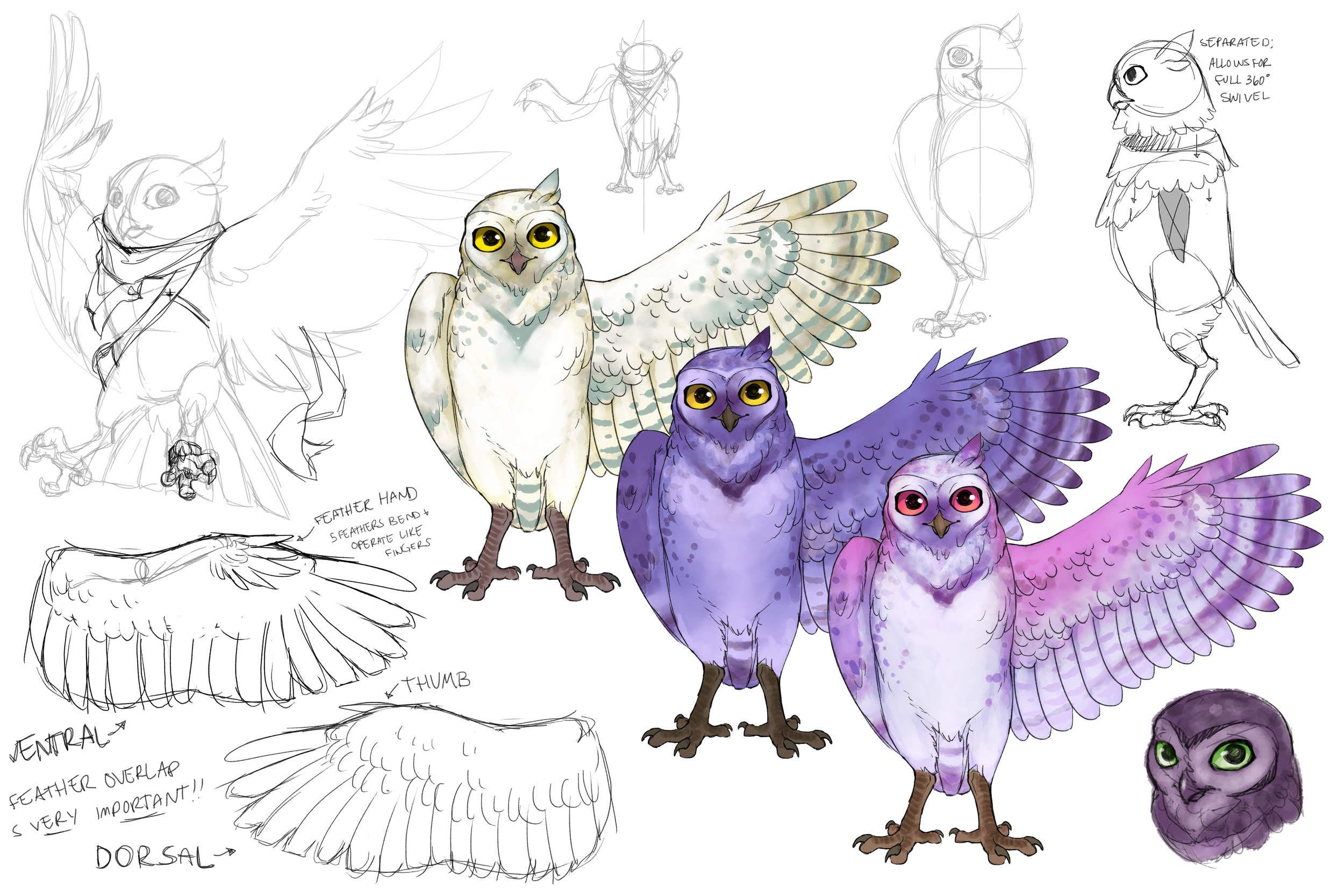 OwlSketches_Round2.png