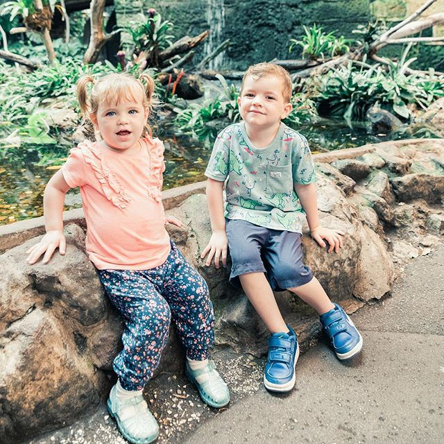 Noah and alia at @chesterzoo