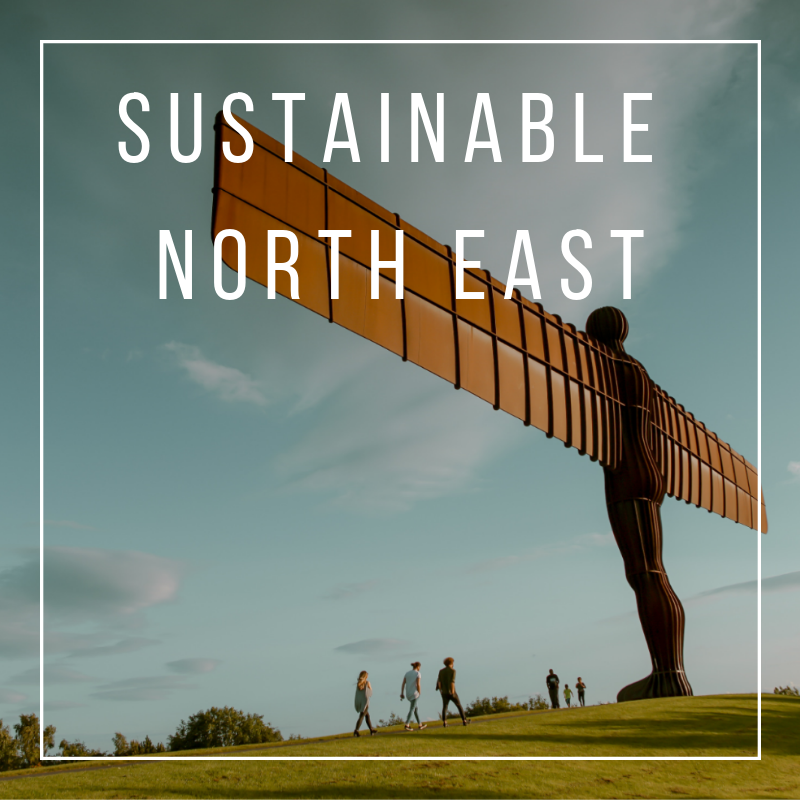 Sustainable North East.png