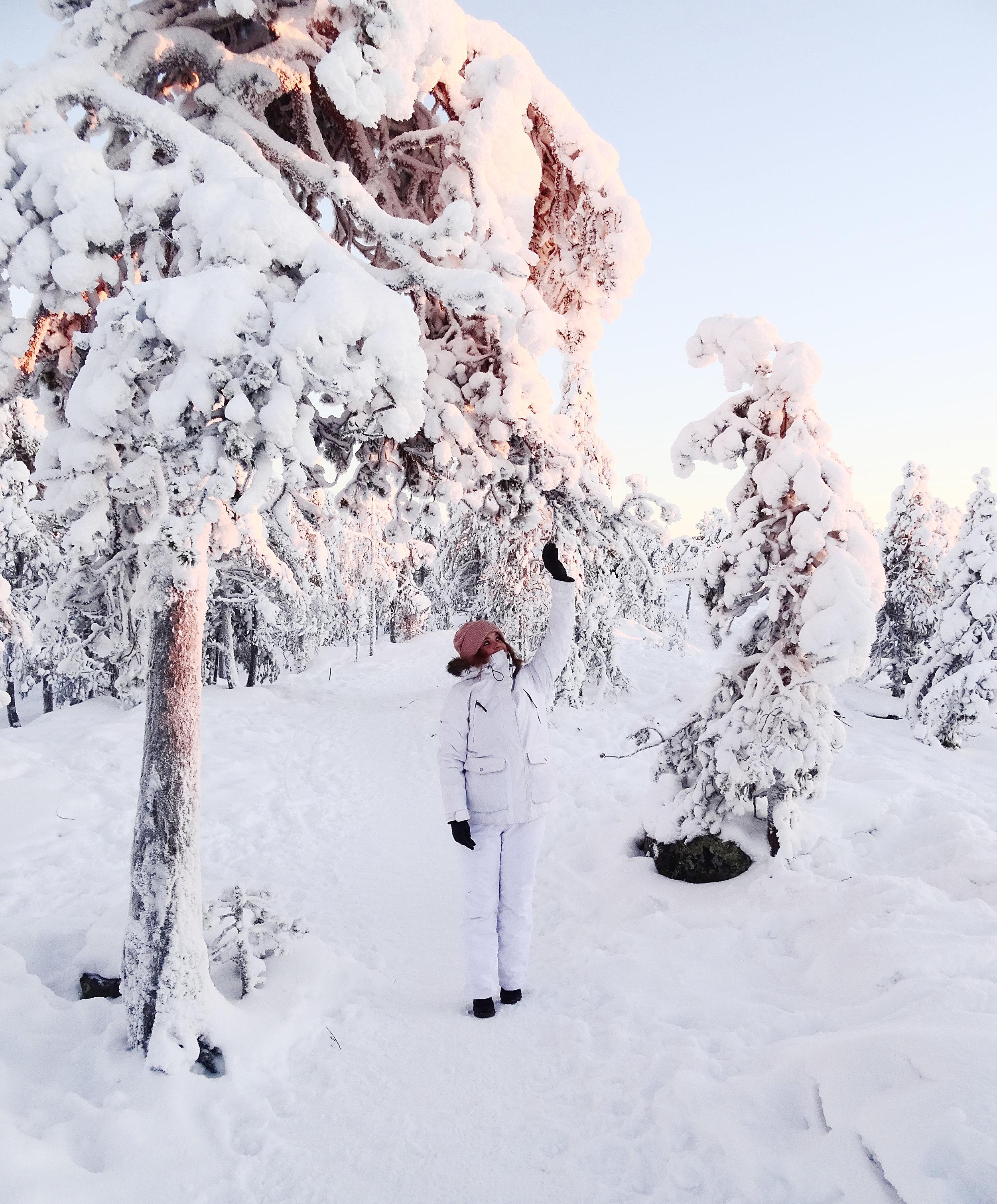 rovaniemi-lappi-lumi-tykkypuu-ounasvaara-matkablogi-mona-kajander.jpg